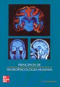 Principios de neuropsicolog�a humana.