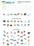 Paquete de 25 cuadernillos de respuestas 2 cancelación WISC-V, Escala de inteligencia de Wechsler para niños-V