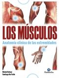 Los músculos. Anatomía clínica de las extremidades